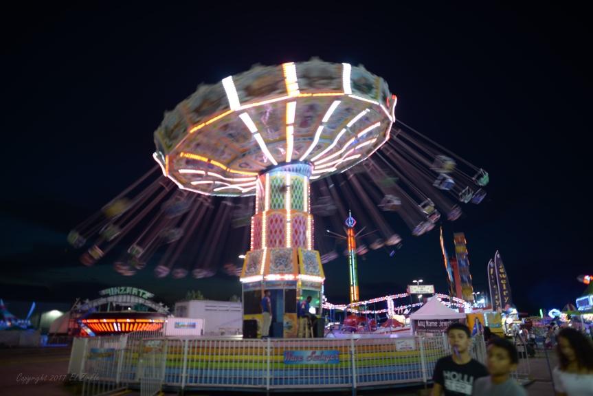 2017 Ohio State Fair Cardinal, Ohio state bird