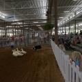2017 Ohio State Fair